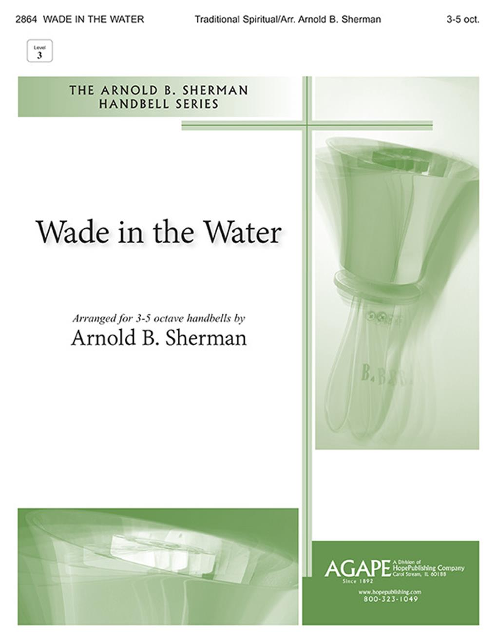 Wade in the Water - 3-5 oct. Level 3 Cover Image